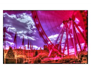 1 abbey park york eye infa red.jpg