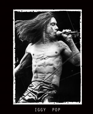 web 1 iggy pop_edited-1.jpg